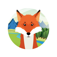 fox cartoon animal picture icon. Circle and colorful design. Vector illustration