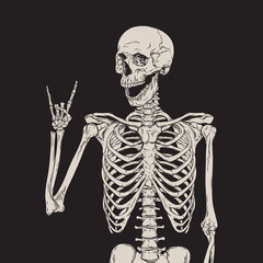 Human skeleton posing isolated over black background vector