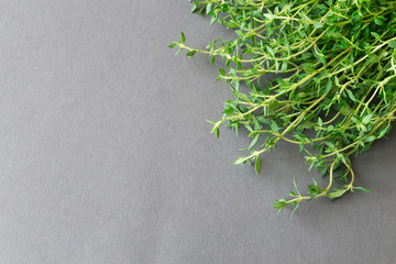 Bunch of green fresh organic thyme. Background