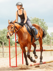 Woman jockey training riding horse. Sport.