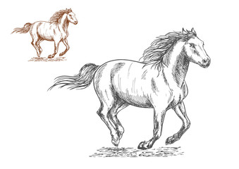 Running horses pencil sketch portrait