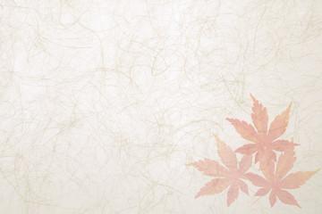 秋もみじ和紙背景