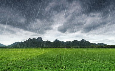 falling rain at Khao Jeen Lae, mountain at Lopburi, Thailand