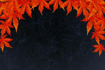 秋もみじ黒-背景