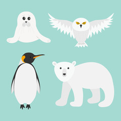Arctic polar animal set. White bear, owl, king penguin Emperor Aptenodytes Patagonicus, Seal pup baby harp. Kids education cards. Winter antarctica blue background Isolated Flat design.
