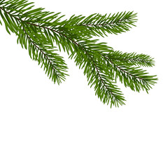 Green, realistic branch of fir. Fir branches. Isolated on white Christmas vector illustration