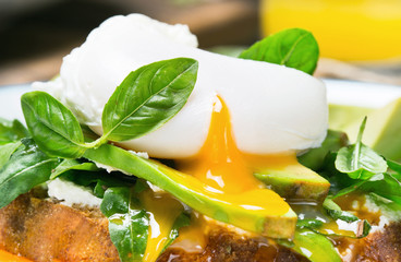 Poached egg with avocado, arugula and basil leaves