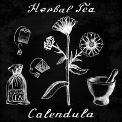 Calendula hand drawn sketch botanical illustration on chalk board