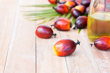 Commercial palm oil cultivation. Since palm oil contains more