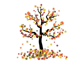 vector illustration autumn tree with falling leaves on a white background