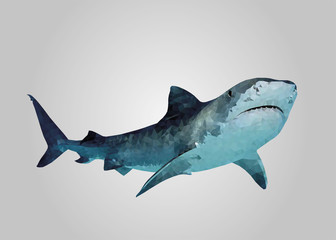 Shark swimming and looking low poly vector