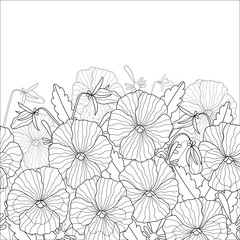 Floral pattern of beautiful pansies. Black and white pattern can be used for coloring.