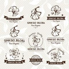 Ginkgo biloba. Badges and labels, emblems collection.