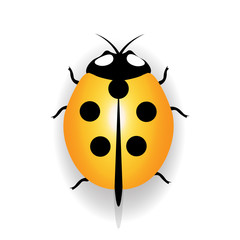 Ladybug icon, yellow ladybug with five black dots. illustration