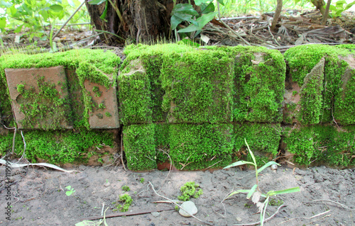 moss norge old