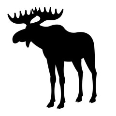 adult moose silhouette, black vector illustration