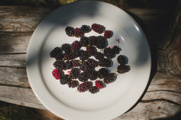mulberries in a rectangular bowl on the wooden floor white color