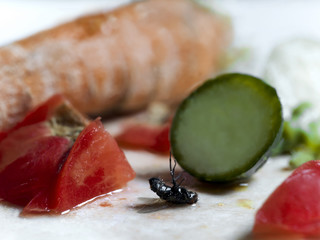 Dead Fly On Vegetables