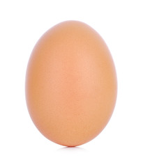 Chicken Egg ,one eggs isolated on white background
