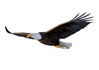 Eagle flies Fototapete