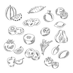 Set doodles elements vegetables and fruits. Vegetarian food