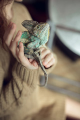 Portrait of young girl with chameleon in arms. Close up photo