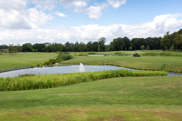 Beautiful pond on golf course at sunny day