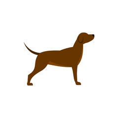 Dog icon in flat style isolated on white background. Animal symbol vector illustration