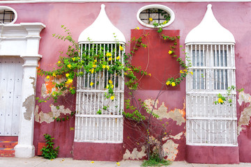 Fotomurales - Rustic Pink Architecture