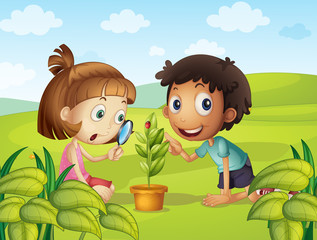 Boy and girl looking at ladybug on leaf