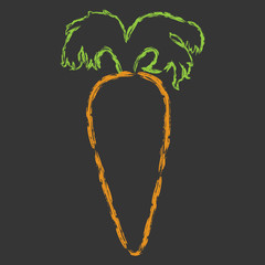 Vector hand drawn brush line color carrot with large tail on black background