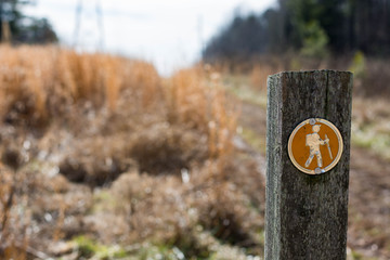 Trail marker along side a path in North Carolina.  Hiking symbol upon a wooden post.