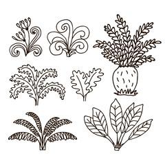 Vector hand drawn illustration jurassic