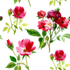 Handwrite roses floral bouquet in watercolor technic. Could be used for creation: backgrounds, similars, pattern, posters, cards.