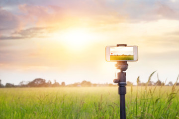 Smartphone on tripod record timelapse in the sunset nature backgound