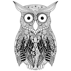 Hand drawn owl  in doodle style. Vector illustration