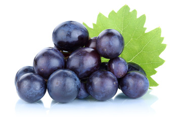 Trauben Weintrauben blau frische Früchte Obst Fototapete