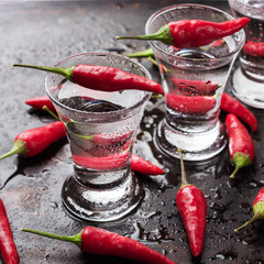 Vodka with chili peppers on rusty grunge table