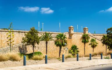 Ancient City Walls of Acre - Israel