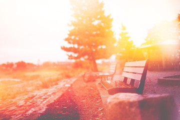 empty bench in morning warm tone, classic light leak vintage color tone beautiful old style for postcard or background.
