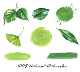 Hand-drawn watercolor illustration of the different green leaves and watercolor spots, isolated on the white background. Natural elements for logo and banners