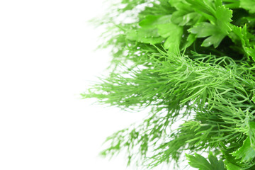 Wall Mural - Different fresh herbs, parsley and dill. Macro photo. Copy space