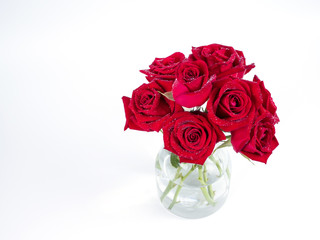 Bouquet red roses flower in glass bottle on isolated background