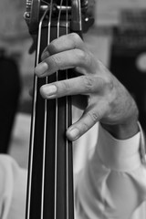 Musician's fingers on the strings bass closeup in black and white