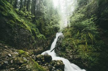 Spoed Foto op Canvas Olijf waterfall on forest stream natural landscape