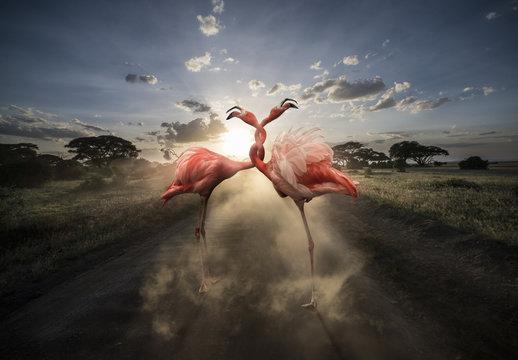 Twisted Flamingos Composite