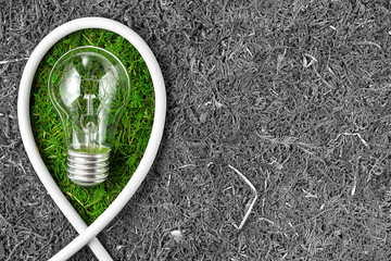 Green energy. Concept ecology. Green light bulb  with copy space