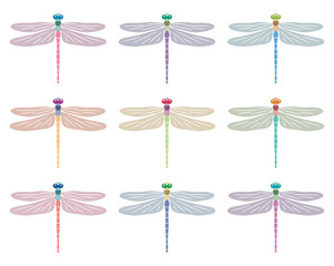 vector abstract dragonfly symbols