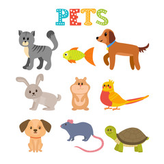 Set of pets. Cute home animals in cartoon style