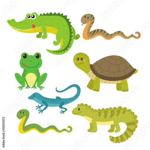 """Set of creeping things. Wild animals"" Stock image and ..."